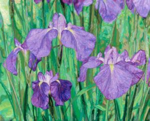 Iris, 2001 Hand-cut Coloraid paper on archival paper 24.25 x 30.25 inches; 61.6 x 76.8 cm  SOLD