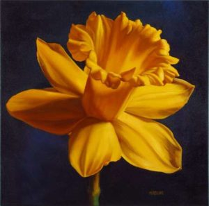 Daffodil, 2014 Oil on canvas; Signed 24 x 24 inches; 60.96 x 60.96 cm