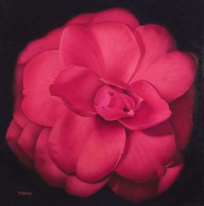 Red Camellia, 2014 Oil on canvas; Signed 24 x 24 inches; 60.96 x 60.96 cm