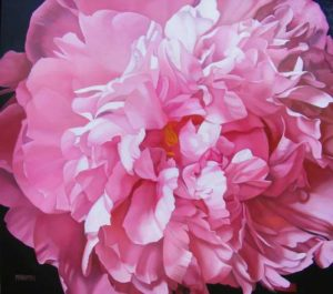 Peony, 2011 Oil on canvas 48 x 54 inches; 121.9 x 137.2 cm