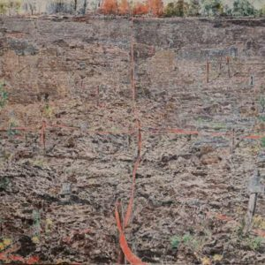 Plowed Field, 2011 Mixed pigments on gessoed tarpaper 71 x 71 inches; 180.3 x 180.3 cm