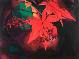 Red Maple, 2006 Hand-cut Coloraid paper on archival paper 24.25 x 32.25 inches; 61.6 x 81.9 cm  SOLD