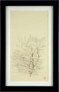 Tree Study (dogwood), 2009 Sumi ink on Kumohada paper 12.5 x 7.5 inches; 31.8 x 19.1 cm  SOLD